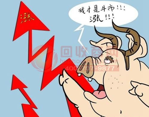 猪肉价单月猛涨30%  销售量减价格却居高不下!